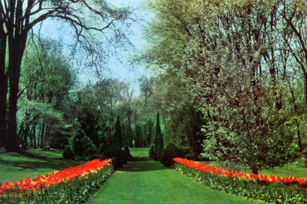 Path to Sympathy Gardens